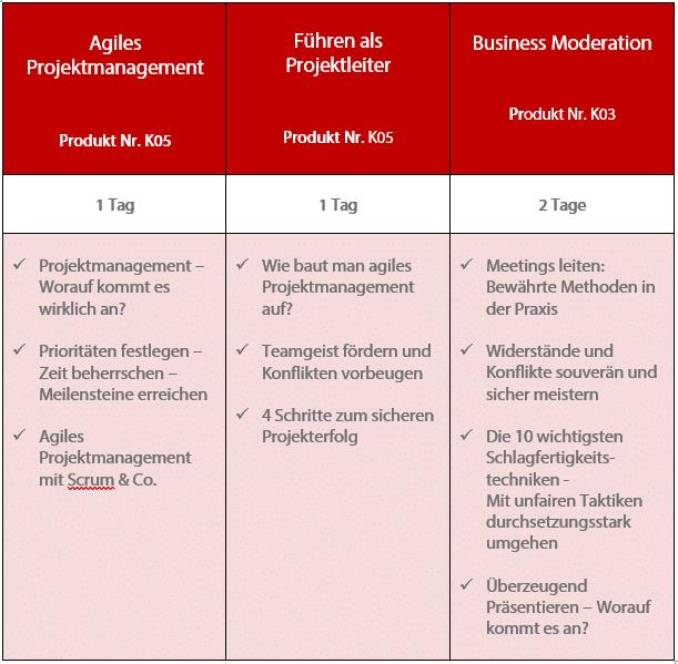 Zertifizierter Projektleiter (S+P)